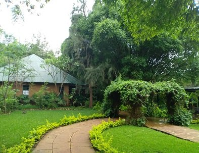 evergreen garden at octagon lodge